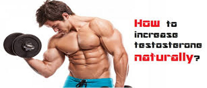 Photo of 4 Ways to increase your levels of natural testosterone