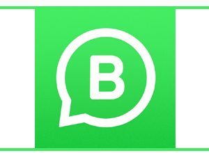 Photo of WhatsApp Business Apk | Manage Your Official Business On Whatsapp |