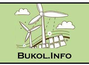 Photo of Bukol.info Website | Awesome Website & Earn With Any Cryptocurrencies |