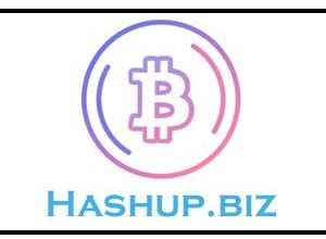 Photo of HashUp.Biz Website | Simple Work And Earn UpTo 50$  Per Day |