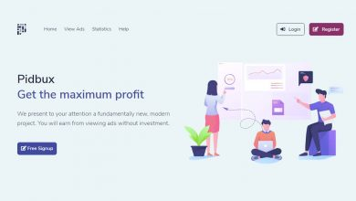 Photo of Pidbux | Get the maximum profit With Pidbux  |